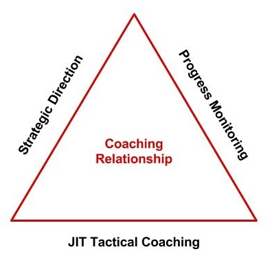 coaching relationship triangle.jpg