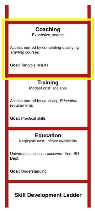 Learning Ladder- coaching.jpg