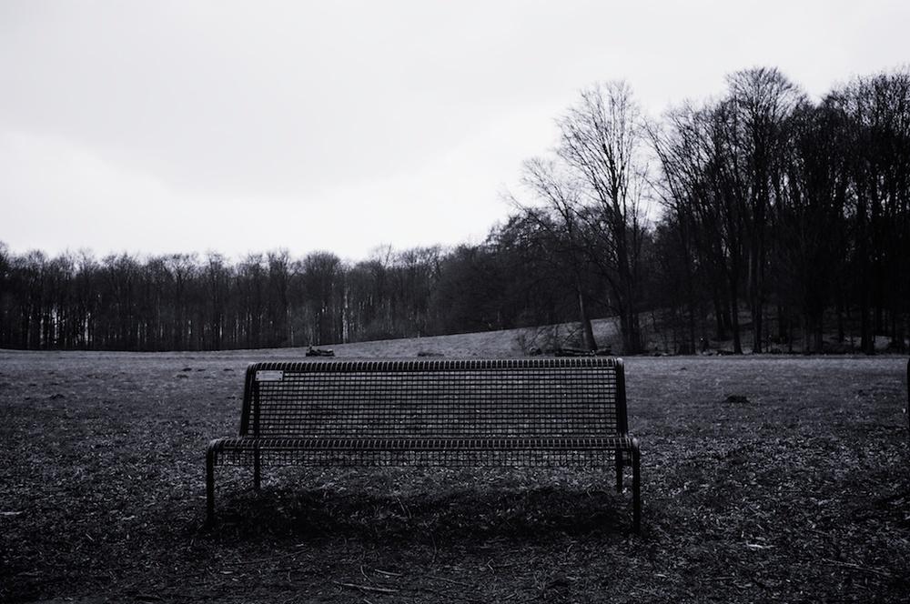 WinterLake 004