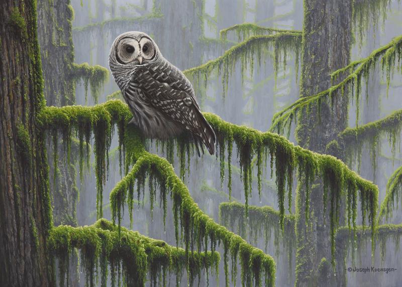 Mossy Forest, by Joseph Koensgen, is part of the Artists for Conservation Festival exhibition at VanDusen Botanical Garden.