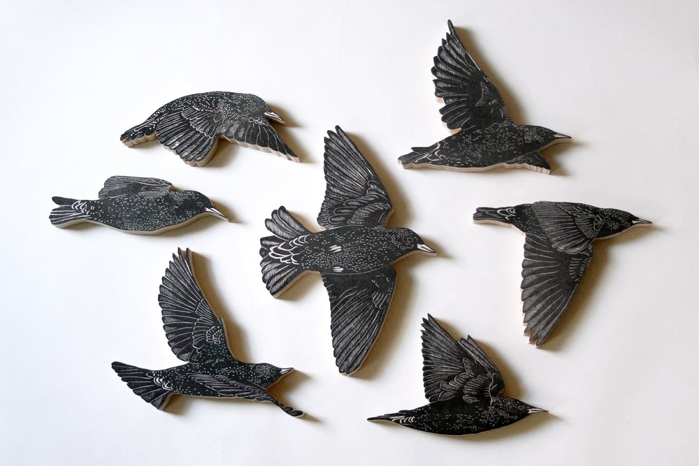Set of 7 European Starlings  ; Nic Annette Miller