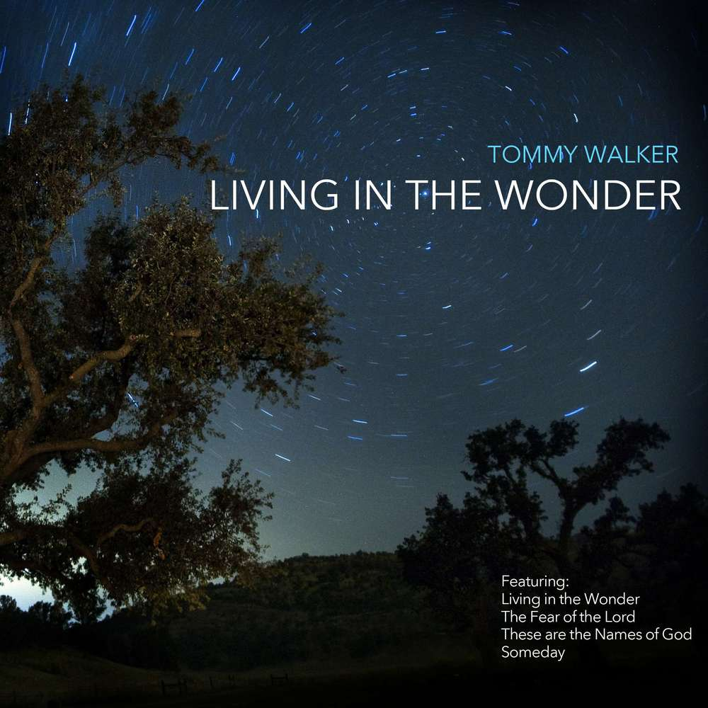 Living in the Wonder  - 2014