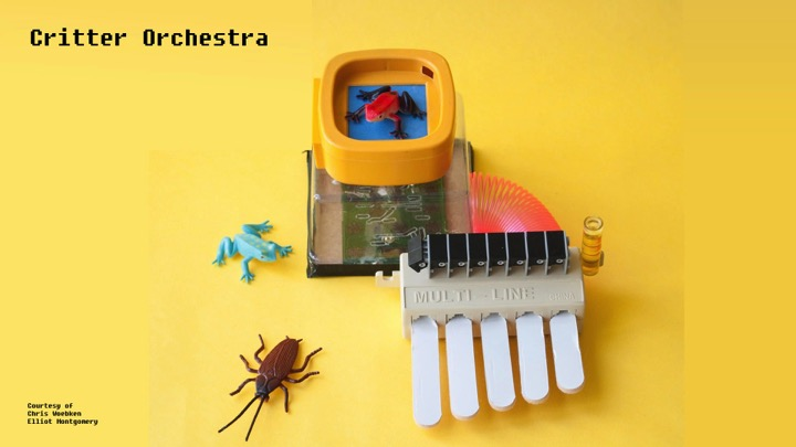 Critter Orchestra