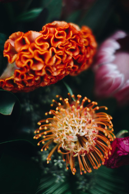 Plantshed-Plantshed Bouquets-0022.jpg