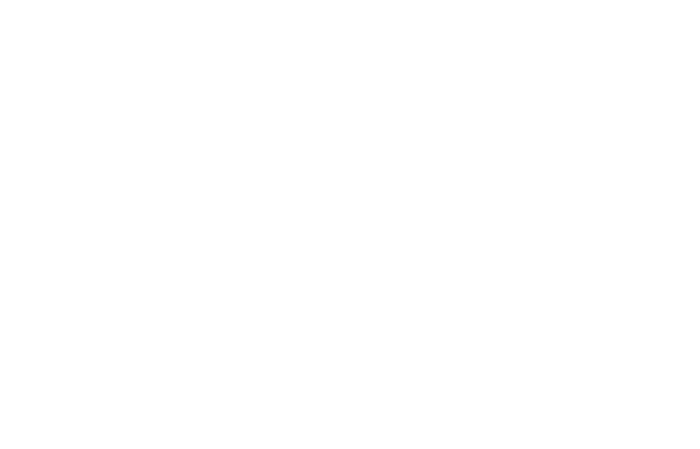 The Flying Okie