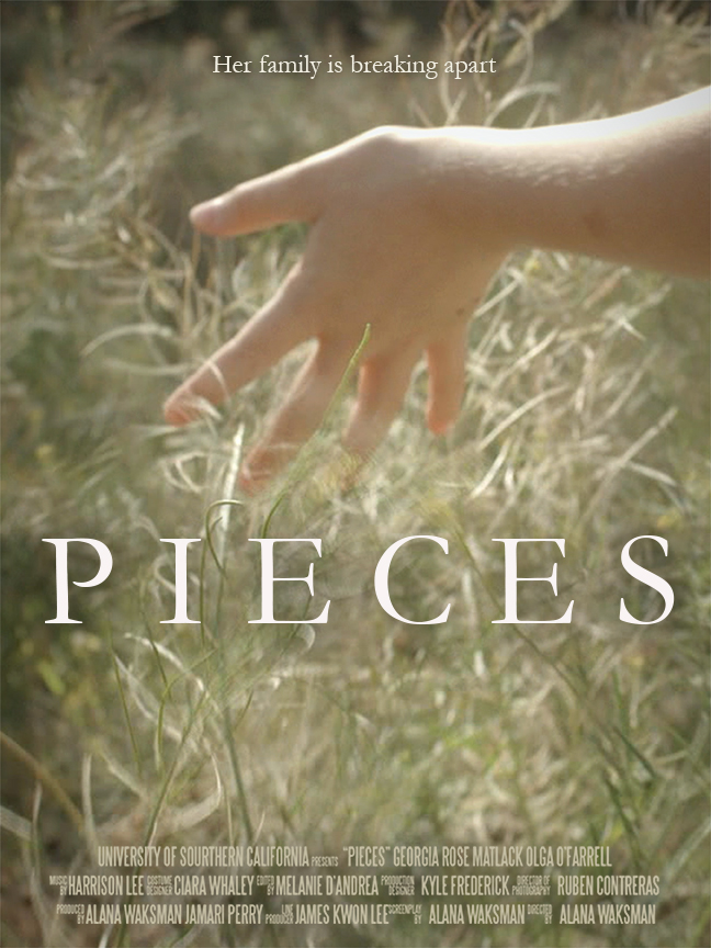 Pieces Poster Copyright 2014.jpg