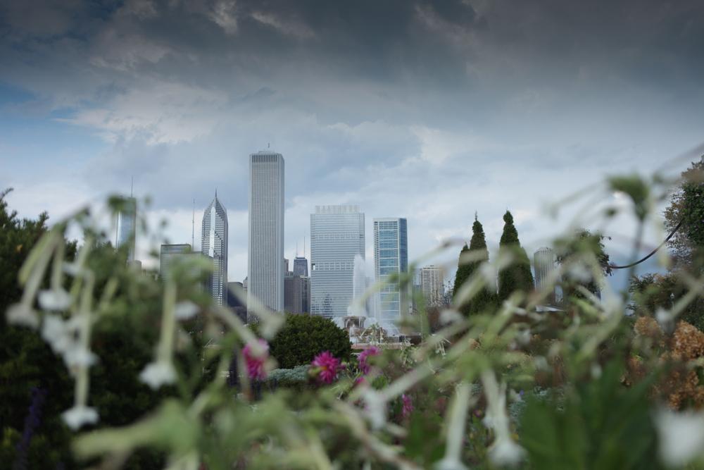 Chicago-11.jpg