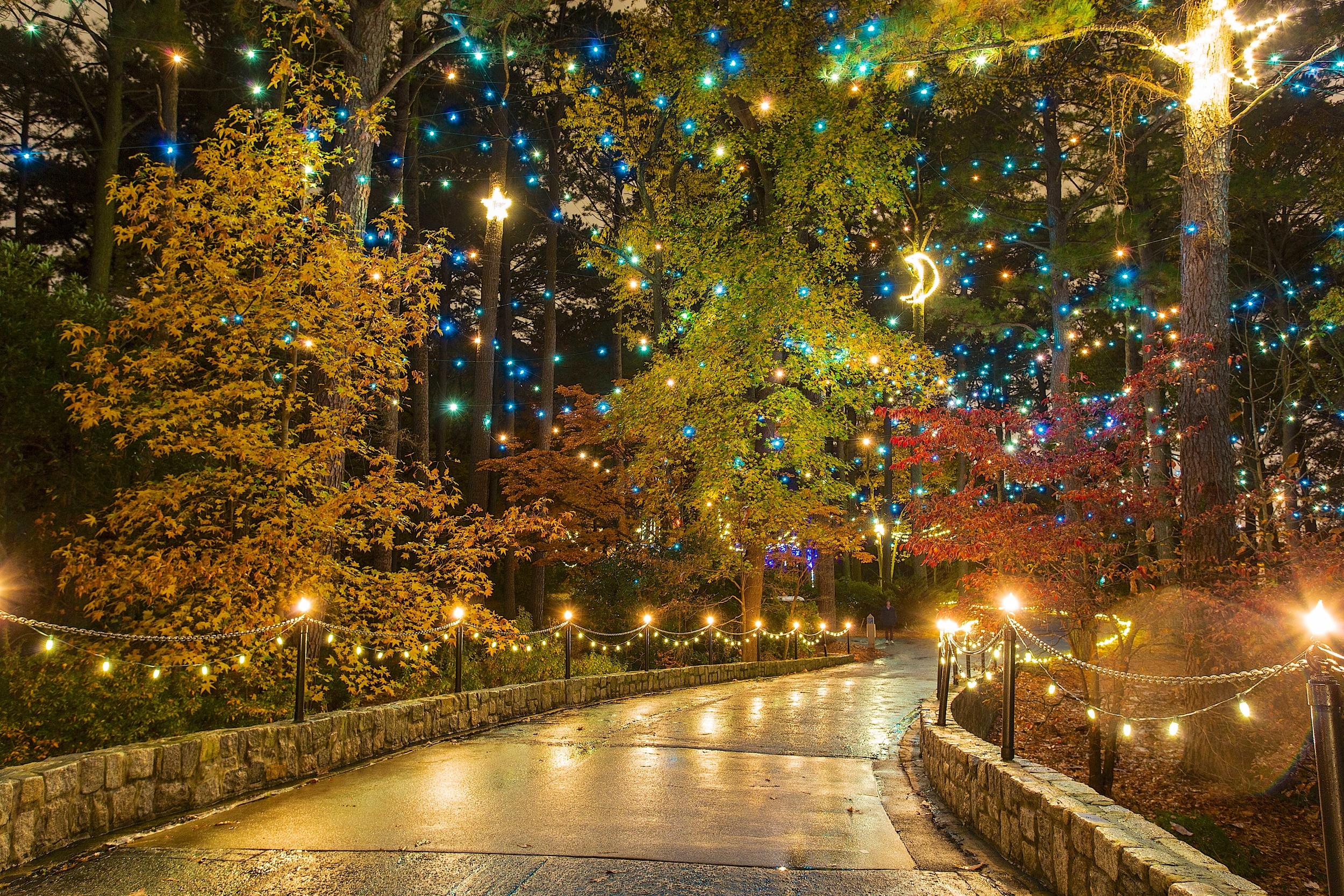 Dominion Garden of Lights 2014 at the Norfolk Botanical Gardens — M ...