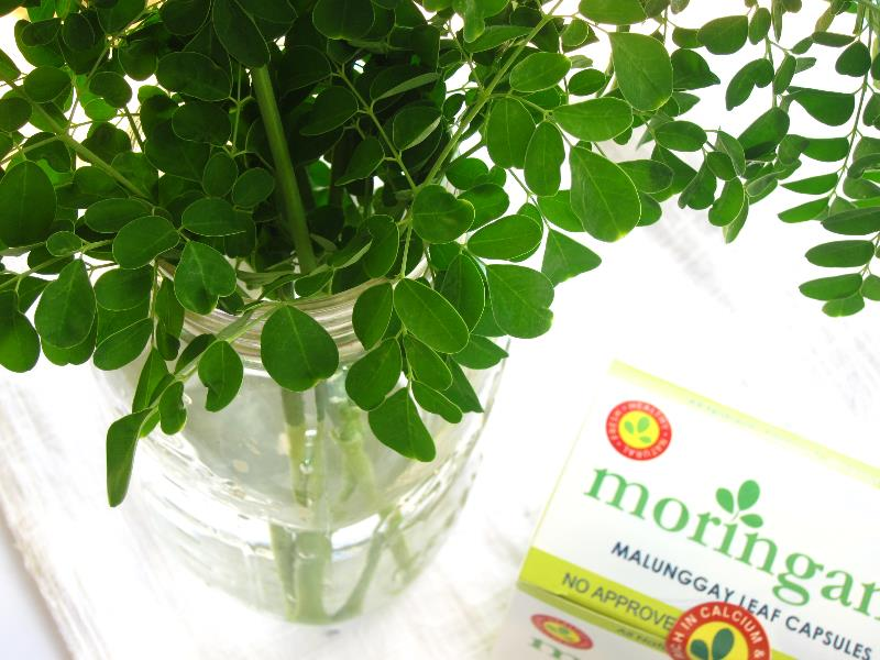 Moringana & Leaves