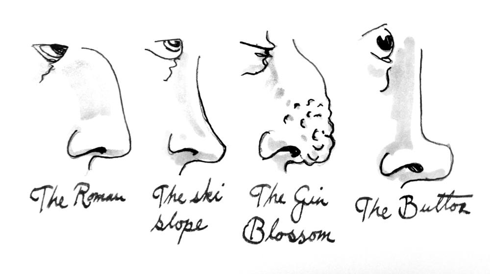 Nose Shapes Names