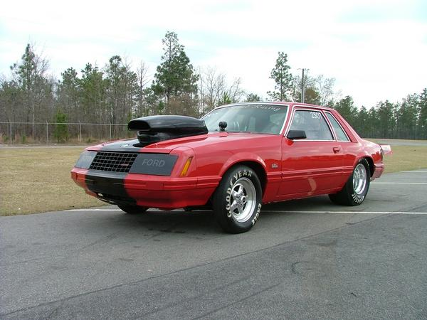 Dales Mustang 4.jpg