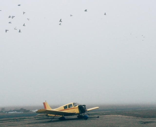 A foggy morning in Lodi, CA (K1O3)
