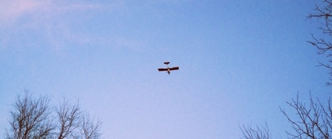 A plane buzzes my backyard in PA. I sprint after it, running through muddy horse manure like an insane person.