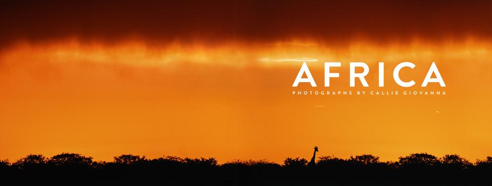 AFRICABook2a.jpg