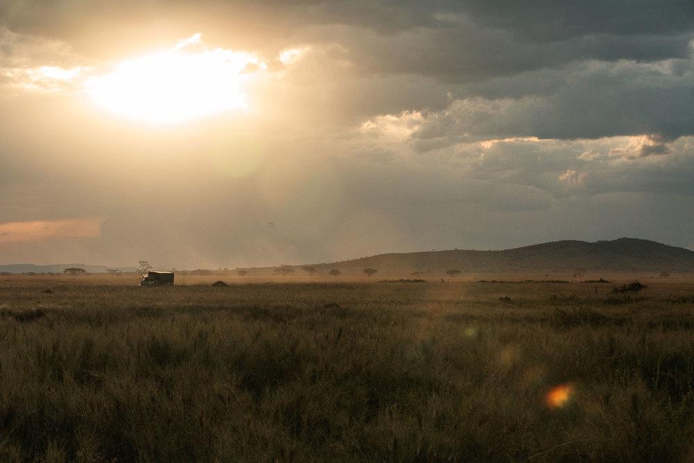 CallieGiovanna_Africa_Tanzania_Serengeti_20150101_07871.jpg