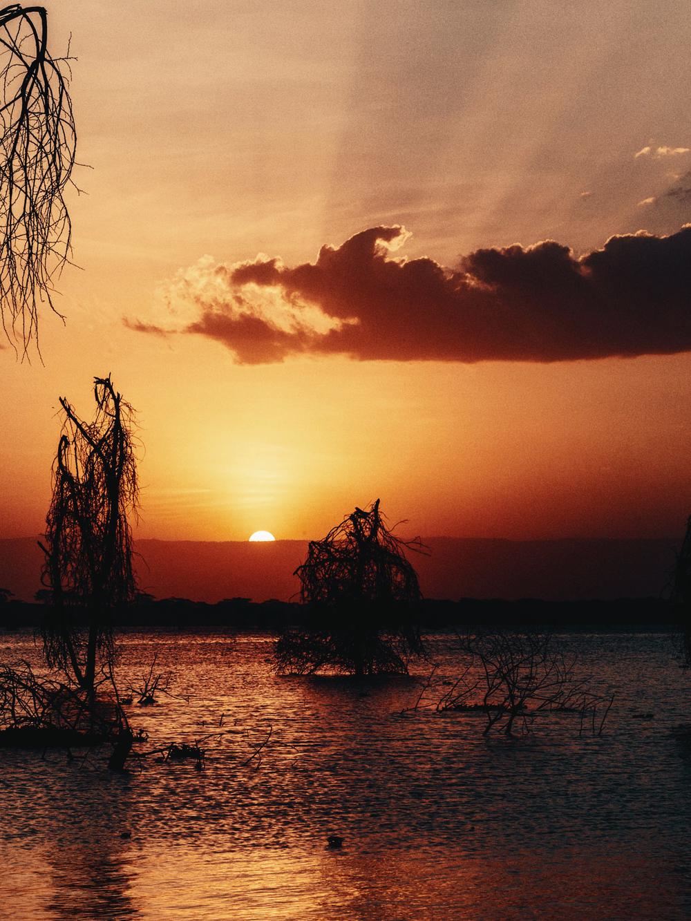 CallieGiovanna_Africa_Kenya_LakeNaivasha_20150101_08749.jpg