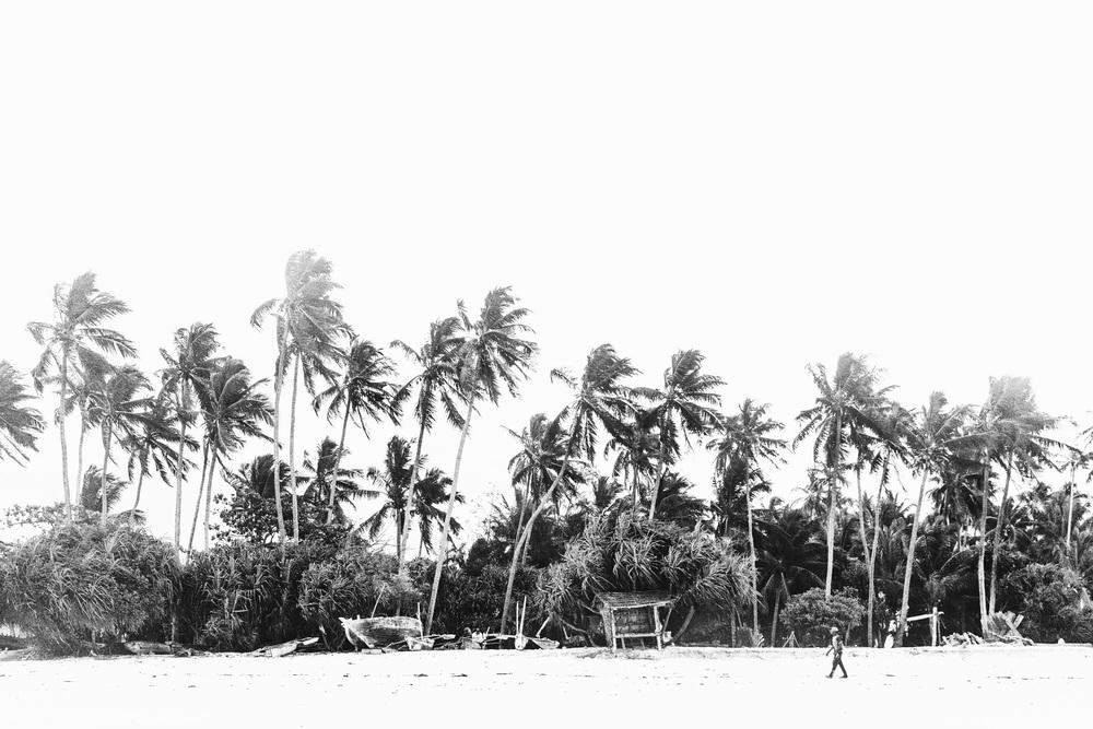 CallieGiovanna_Africa_Zanzibar_Nungwi_20150101_06992.jpg