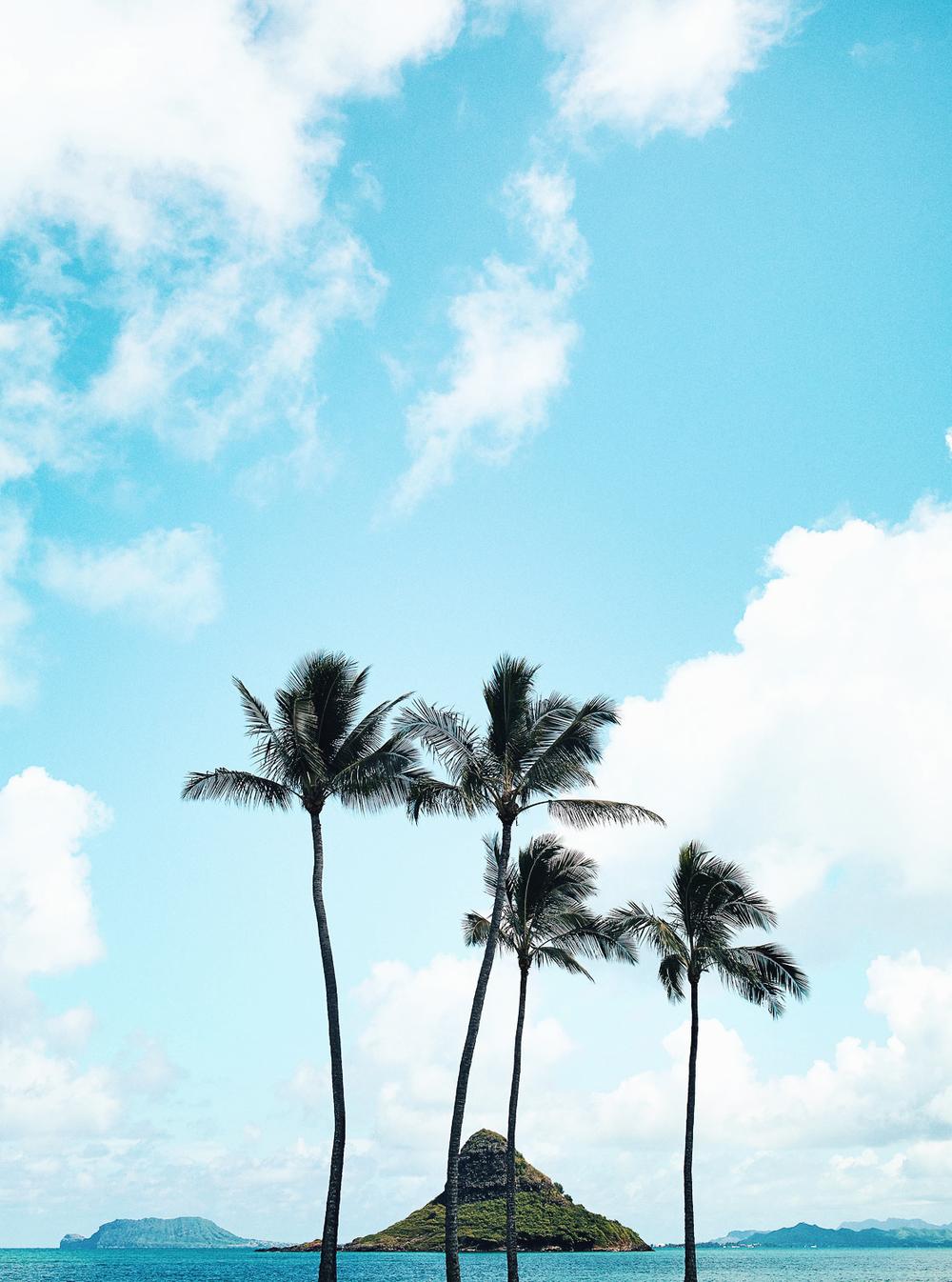 CallieGiovanna_NorthAmerica_UnitedStates_Hawaii_ChinamansHat_20140912_0444.jpg