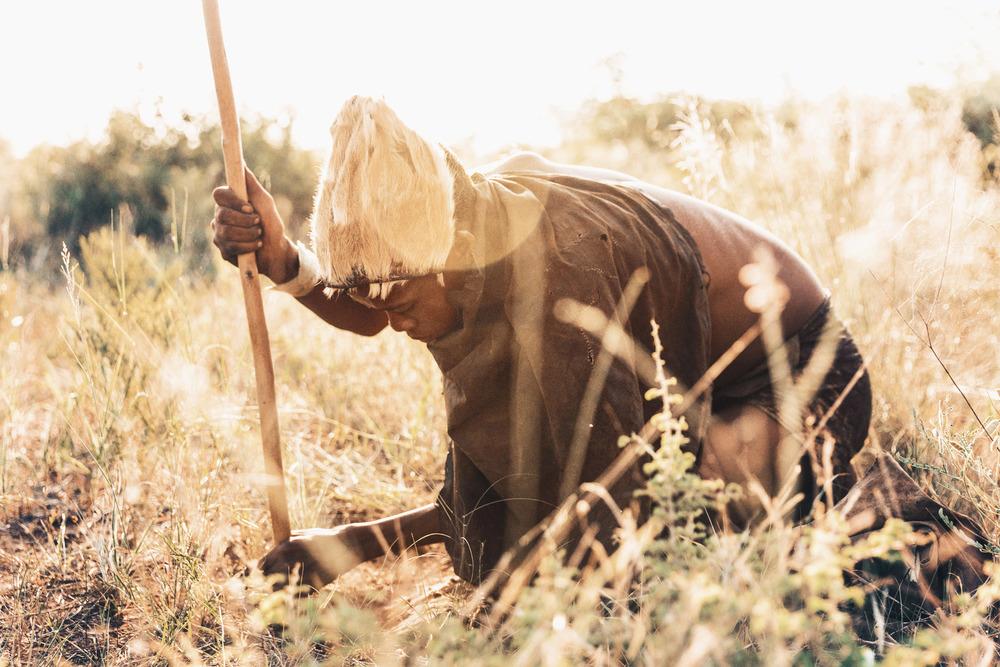 CallieGiovanna_Africa_Botswana_Kalahari_20150101_02994.jpg