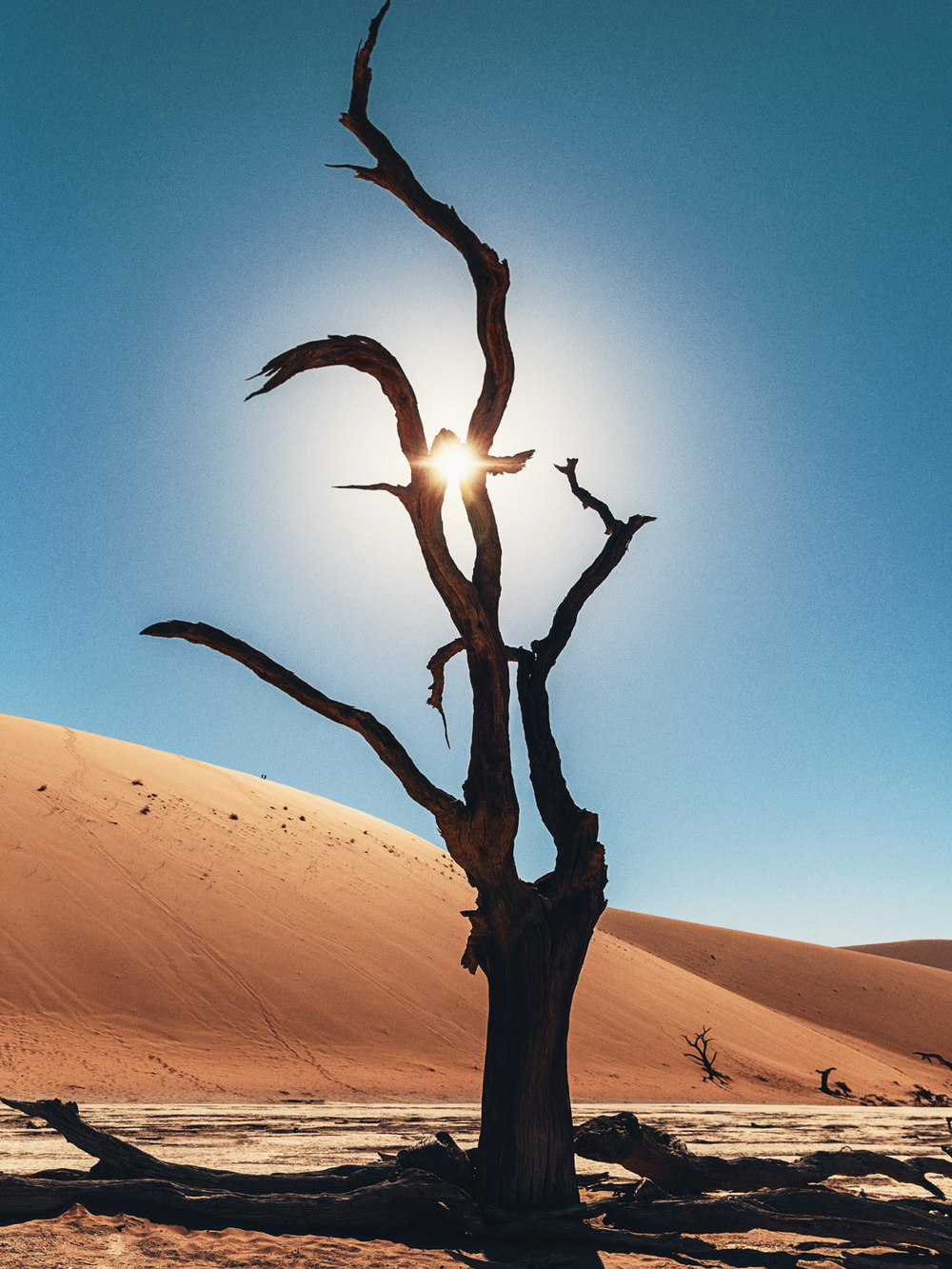 CallieGiovanna_Africa_Namibia_DeadVlei_20150101_00608.jpg
