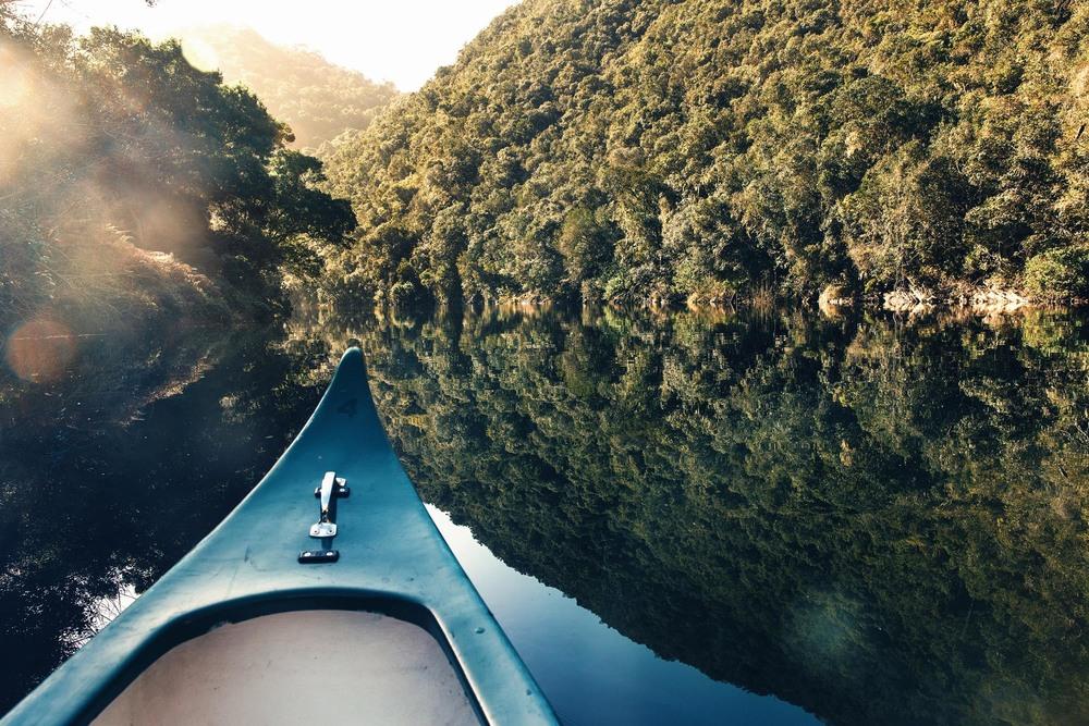 CallieGiovanna_Africa_SouthAfrica_Wilderness_20150701_1372.jpg