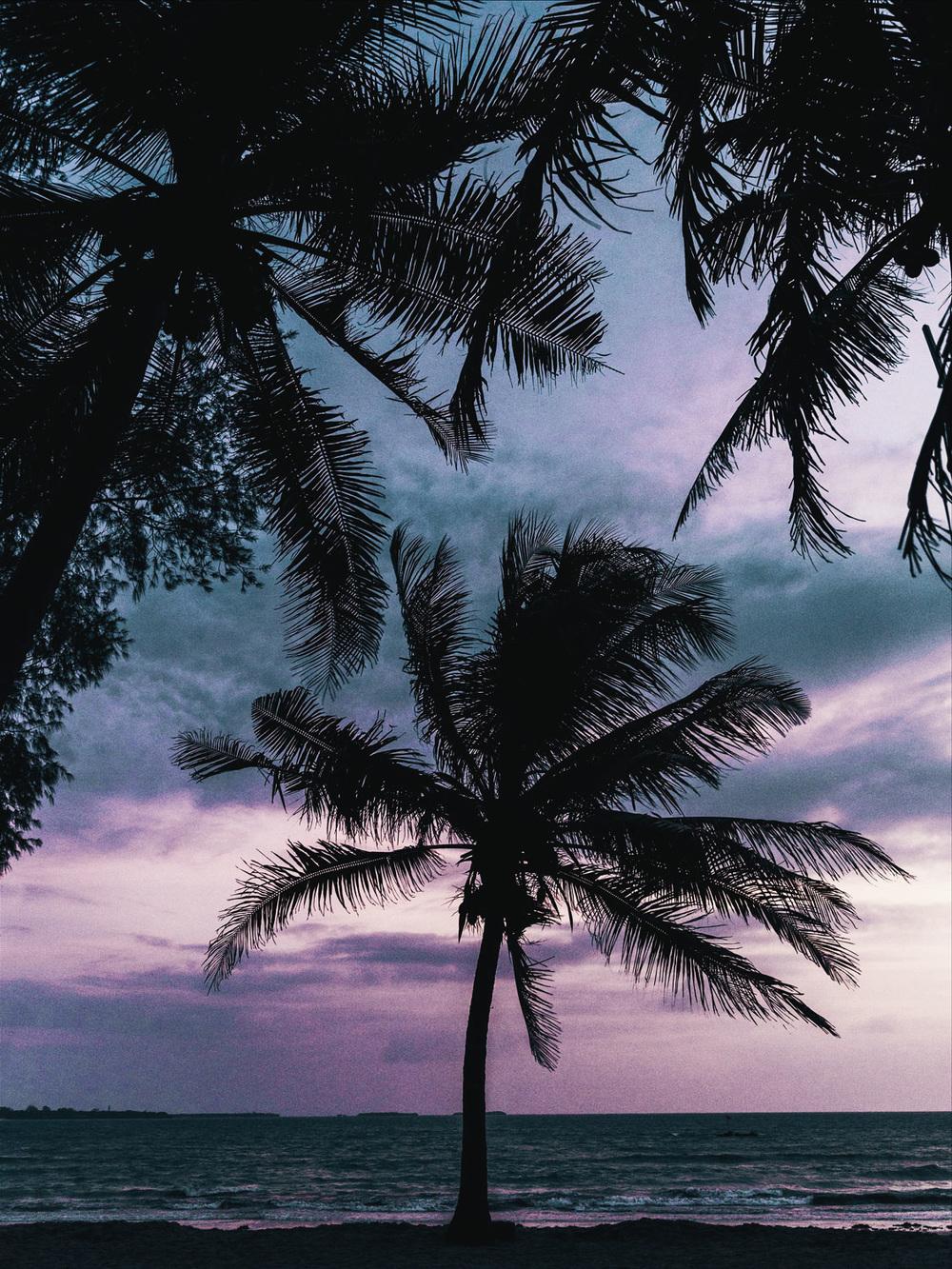 CallieGiovanna_Africa_Zanzibar_DarEsSalaam_20150101_06627.jpg