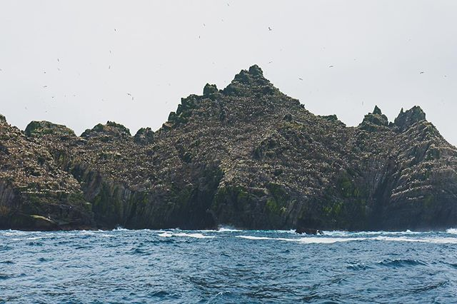 "2/3 - ""Finding Luke"" - Skellig Islands, Ireland, 2016"