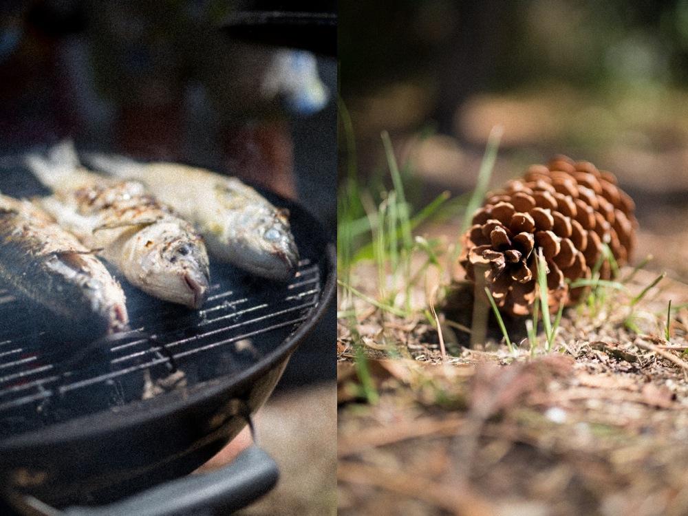 Grilled fish.jpg