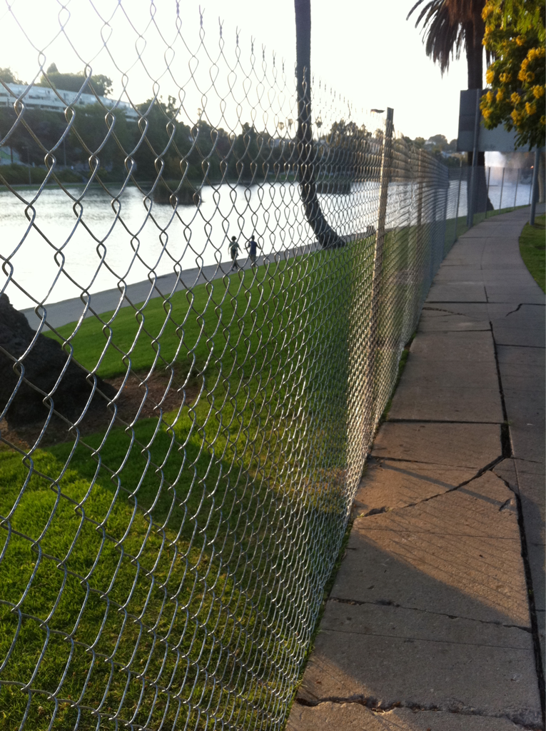 Echo Park Lake closed and open