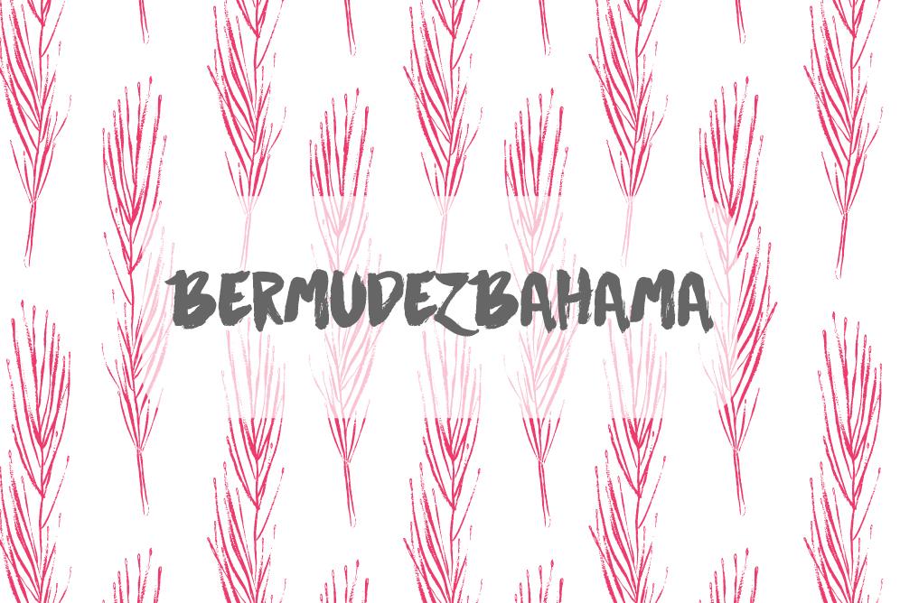 bermudezbahama-market-card_1.jpg
