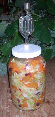 """Picklemeister"" making Kimchi"