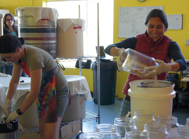 A commercial kombucha operation is a great idea for building a resilient, sustainable economy. Photo from kombuchamama.com.