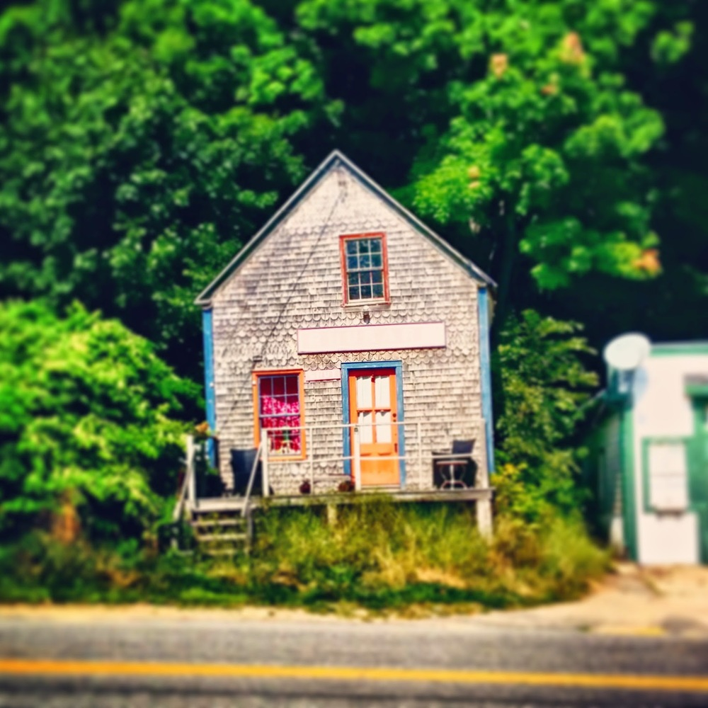 "Just a colorful small house spotted on the side of the road in Maine. Sign above the door reads ""RHUBARB""."