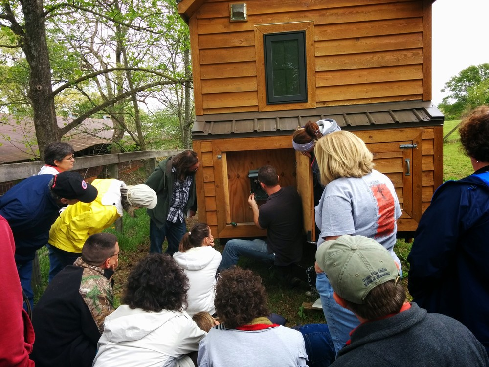 Tiny Home Builders Hands On Tiny House Workshop Recap Review