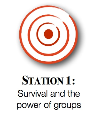 Station1graphic.jpg