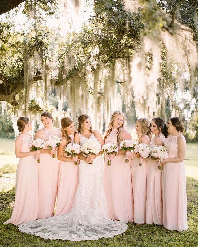 Southern trees and these pretty thangs ❤️✨ #thatlacommunity #louisianaphotographer  #batonrougephotographer #weddingphotographer #destinationweddingphotographer  #weddinginspiration #theknot #southernwedding #trueloveinspo #photobugcommunity #greenweddingshoes #californiaweddingphotographer #austinphotographer #mandevillephotographer #floridaphotographer #arizonaphotographer #pensacolaphotographer #destinphotographer #lafeyettephotographer #atxphotographer #idigbr #lovegoesround #radlovestories #livewildatheart #radcouples #firstandlasts #pursuingthelove #radstorytellers #loversofthelight_  #wednola