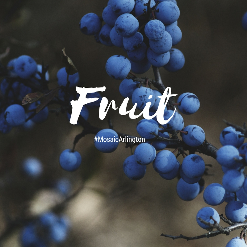 Fruit.  ||  May - July 2013