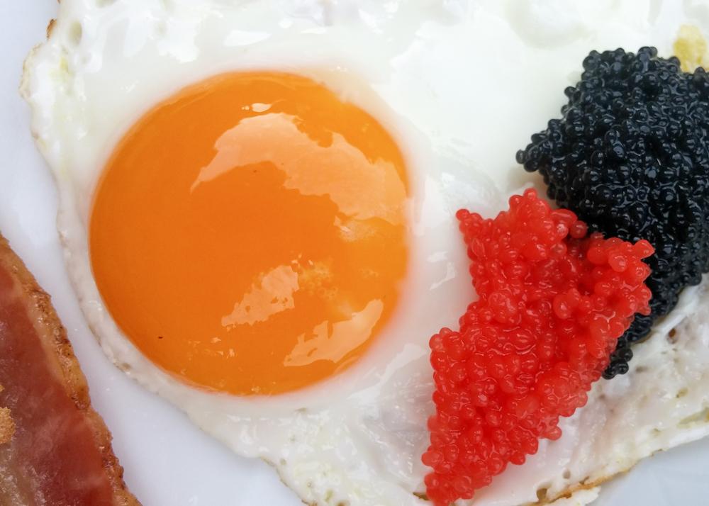 Eggs and Eggs.jpg