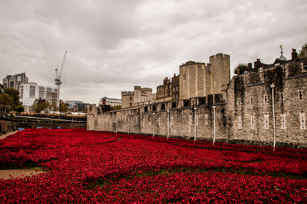 Tower of London - Poppy.jpg