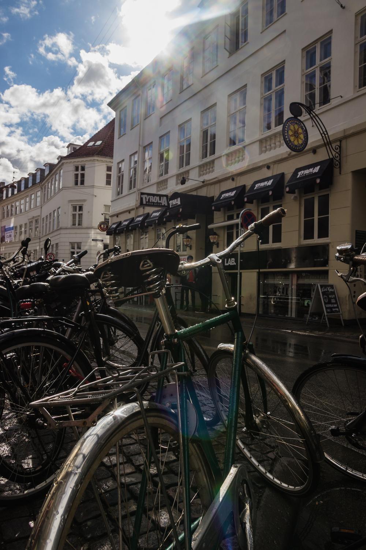Copenhagen-3744.jpg