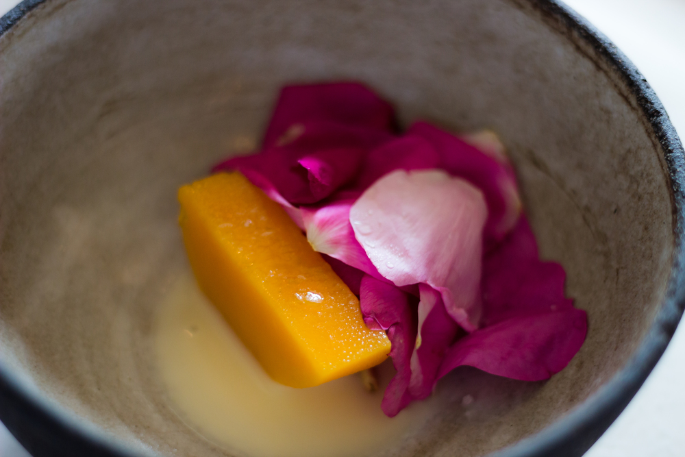 Squash, Petals, and Beechnuts