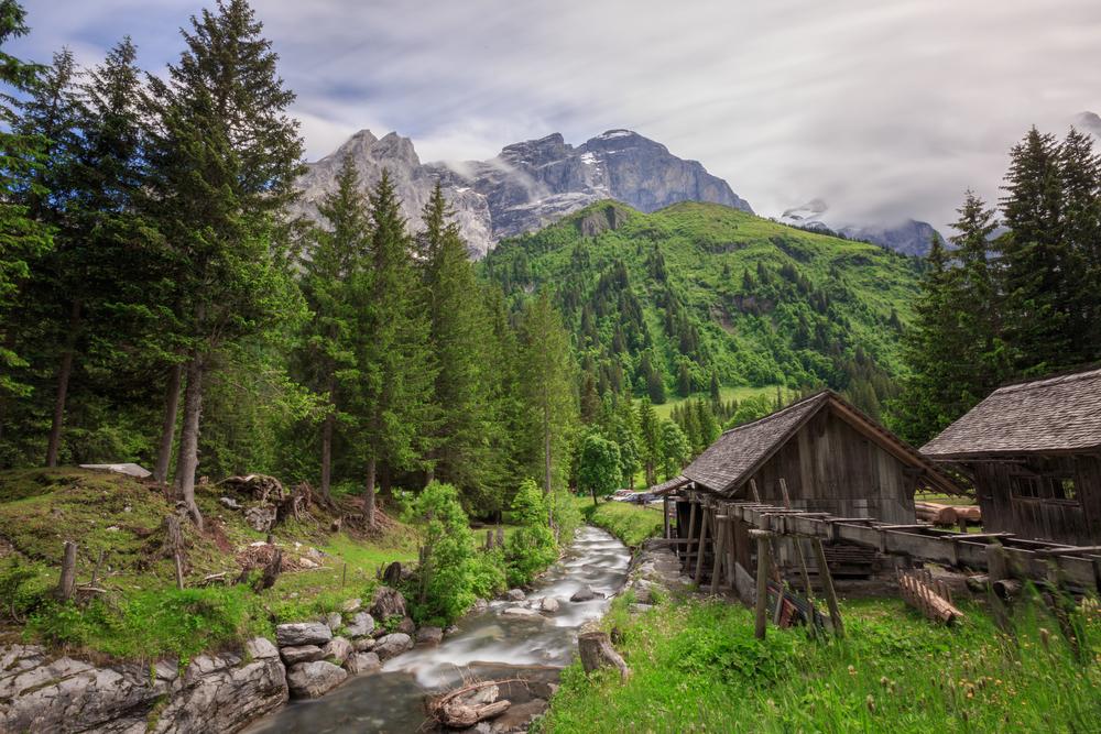 SchwarzwaldalpSM-1165.jpg