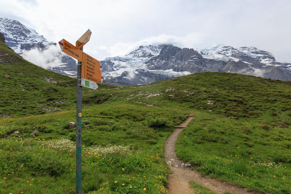 Trail to Wengen