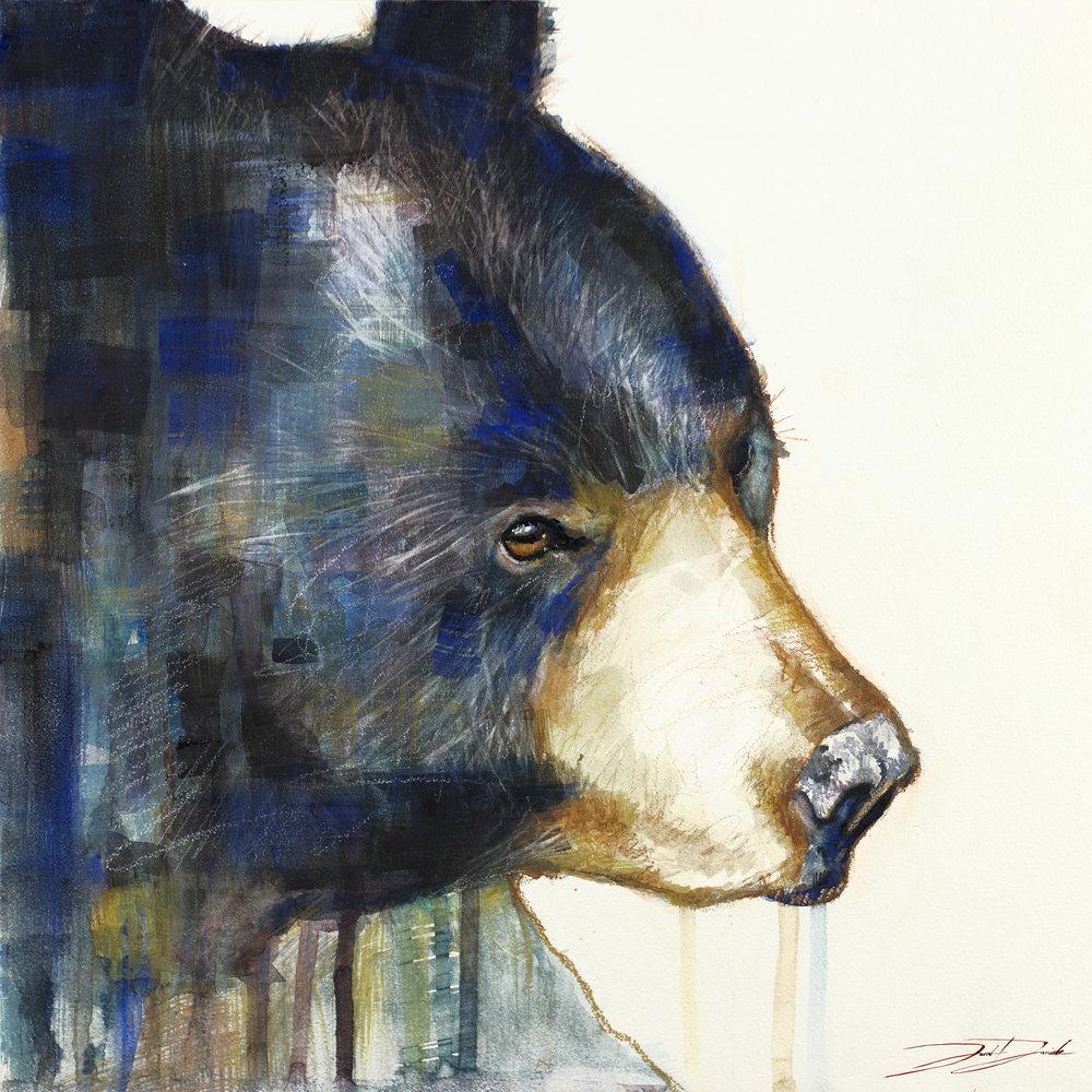 Bear-web.jpg