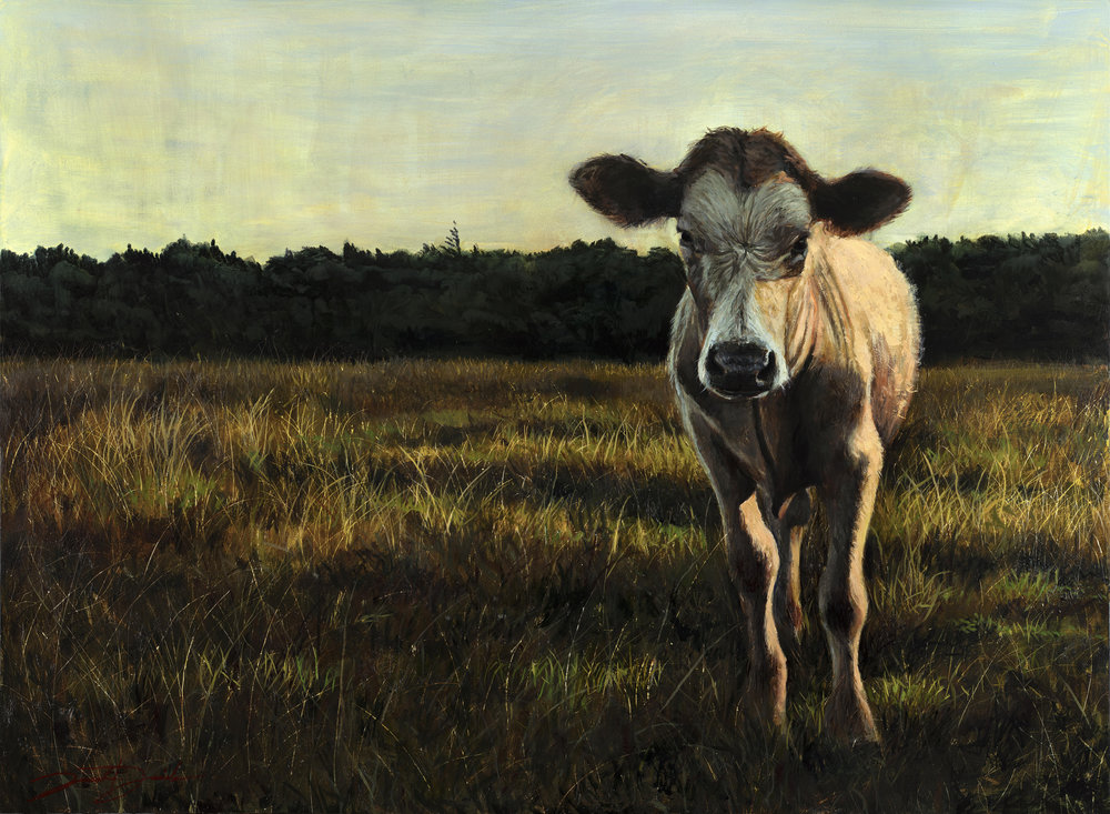 """Evening Light""  22""x30"" oil on panel"