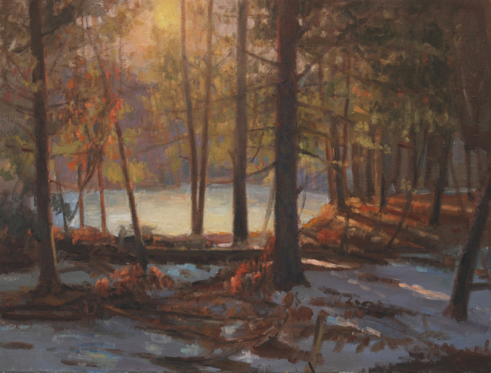 Winter Forrest Light, Oil on linen, 18x24 inches.