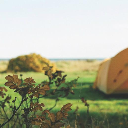 Camping på Feddet