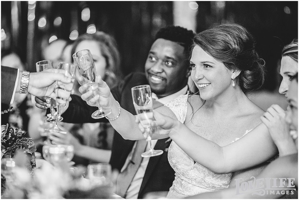 brielle-davis-events-oxon-hill-manor-wedding-toasts.jpg