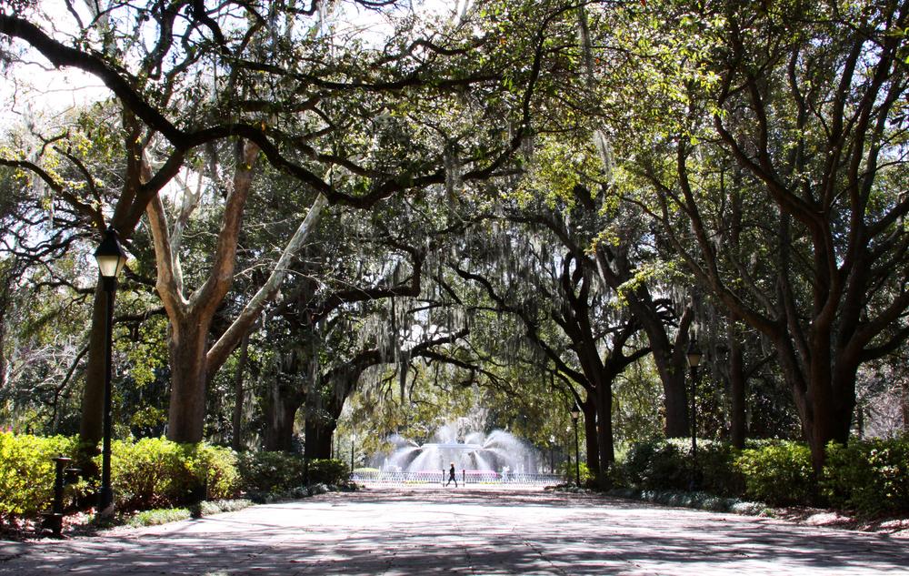 Savannah Forsyth Park.jpg