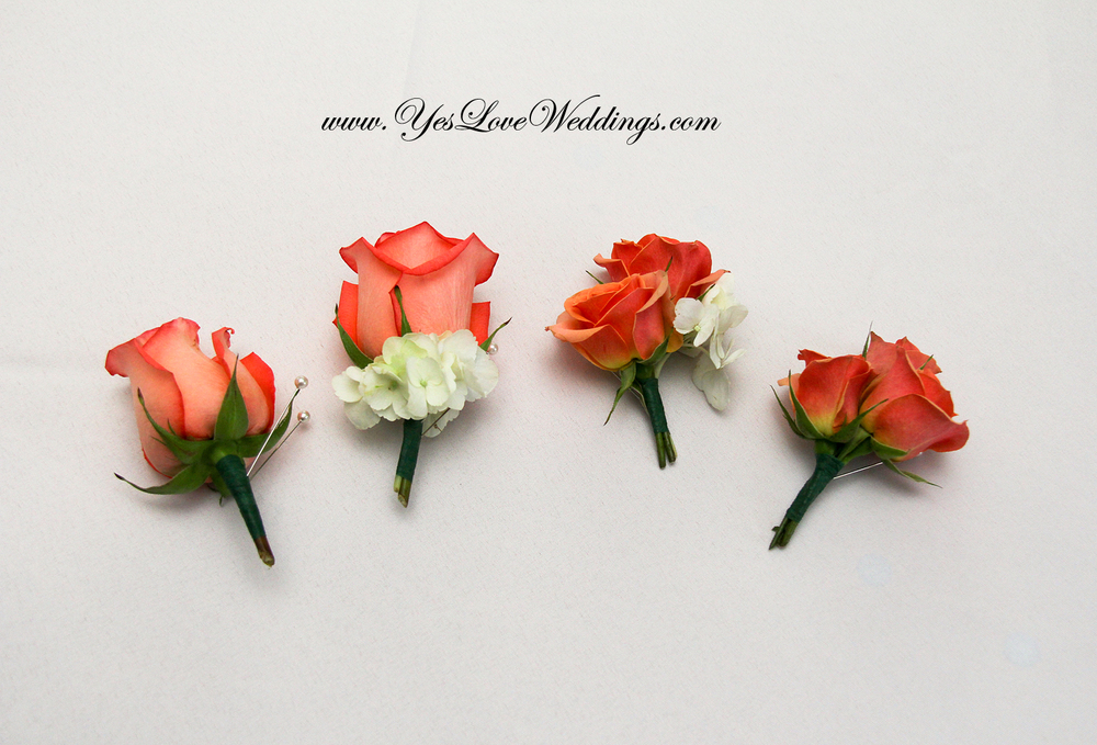 Groom's boutineres with coral roses beach wedding